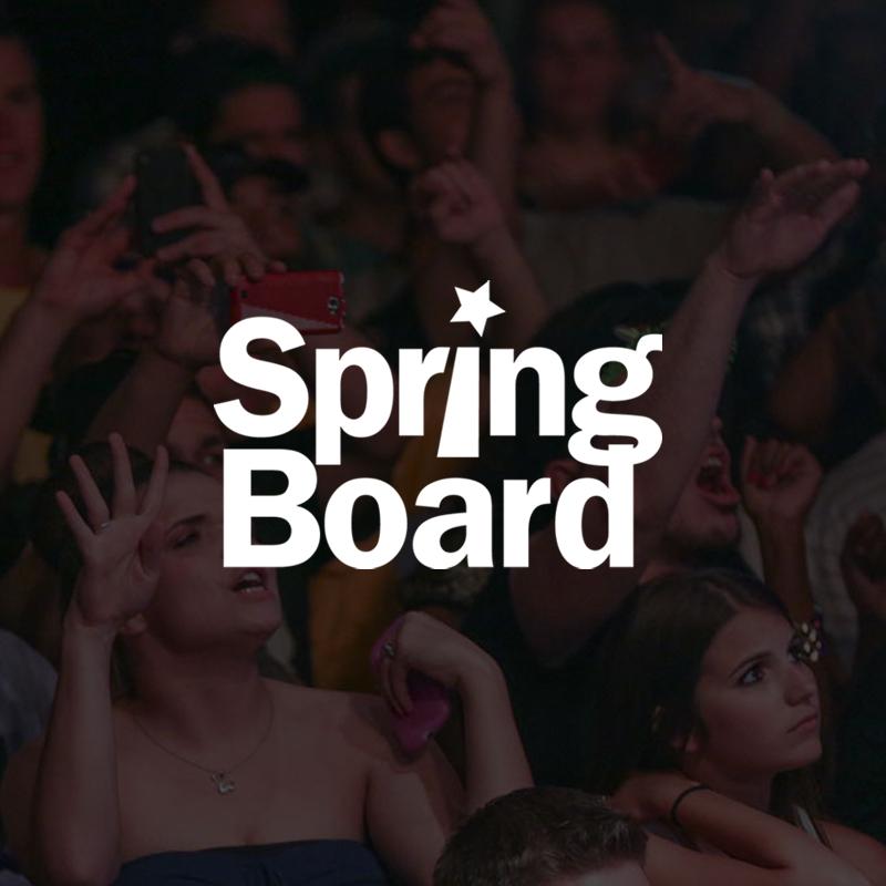 Strategic Partners | SpringBoard